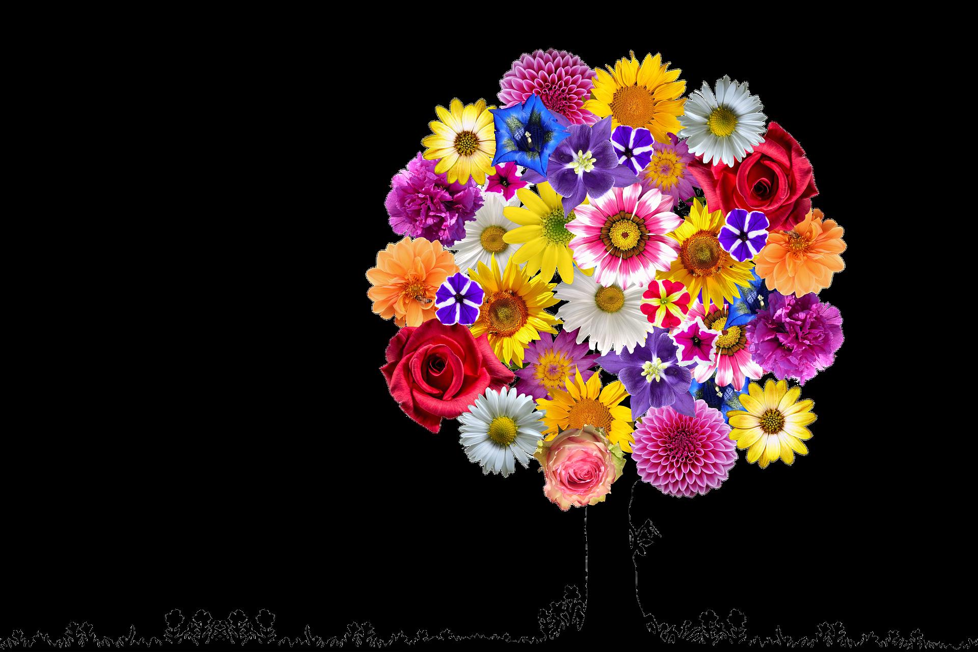 flowers-2731337_1920
